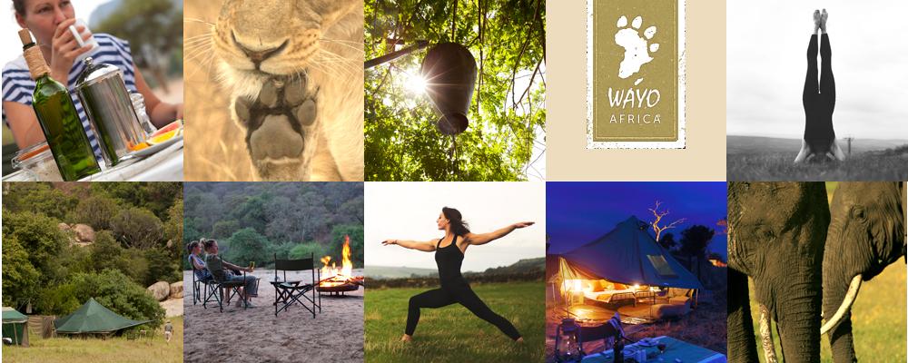 retreats_yogasafari